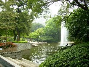 Beautiful Kowloon Park, Tsim Sha Tsui
