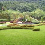 Western Garden