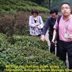 Mr. Chu, writer's chief tour guide, talked about green tea