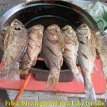 Fried fish caught by cormorants