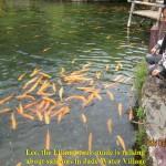 Lee is talking about salmons in Jade Water Village