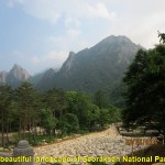 A Scenic View of Seoraksan National Park