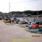 Daepo Fishing Wharf