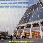 Doota Mall in Dongdaemum Market